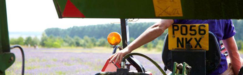lavender harvester 3a